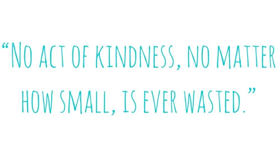 no-act-of-kindness-no-matter-how-small-quote