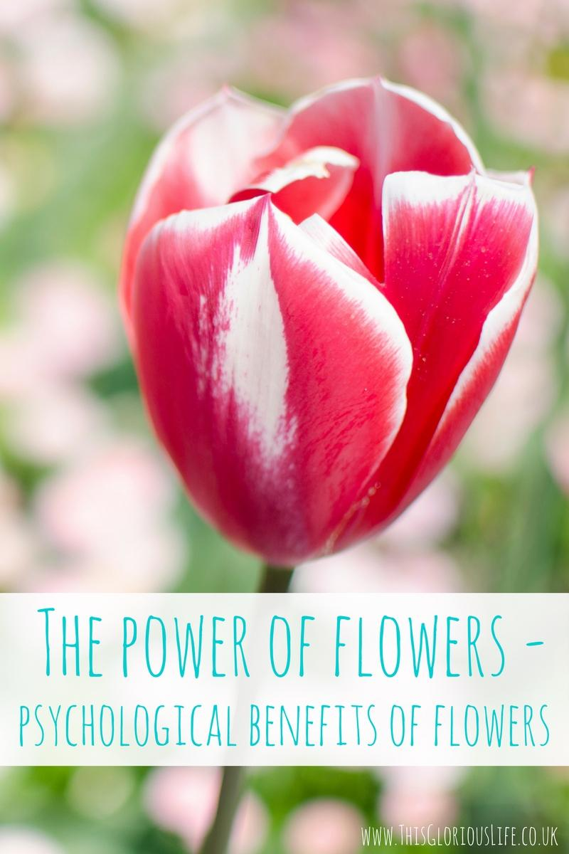 power-flowers-psychological-benefits