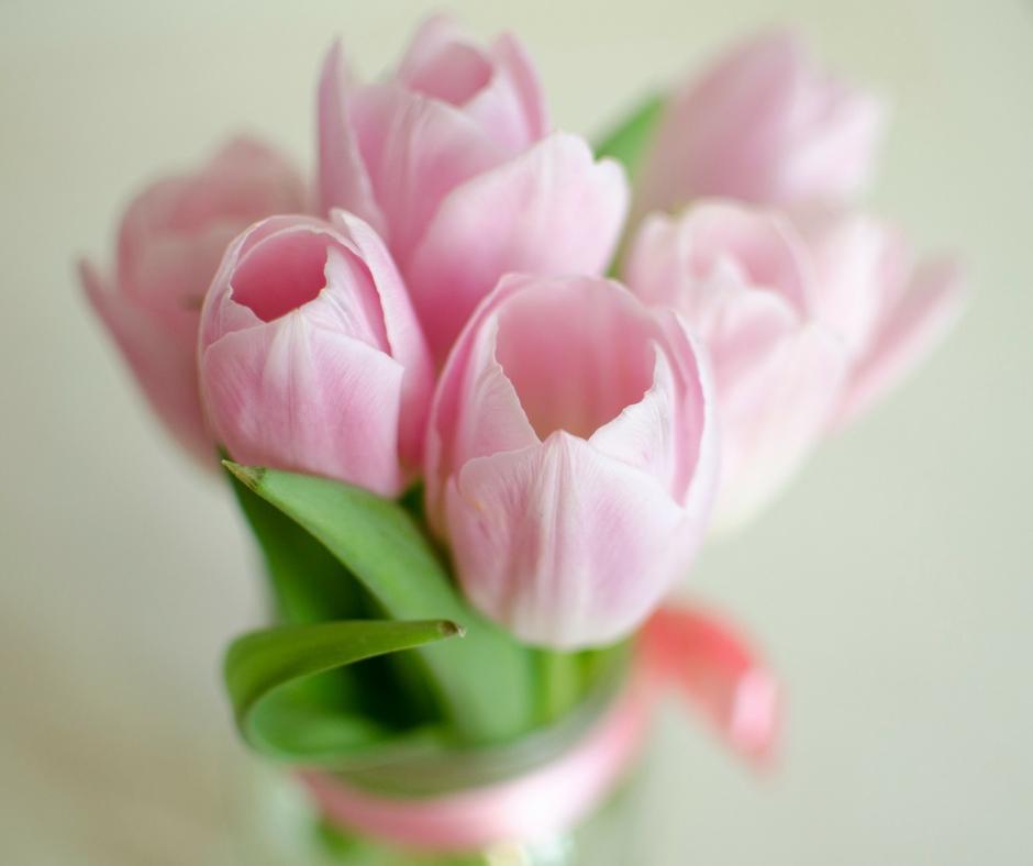 tulips-hidden-flower-meanings