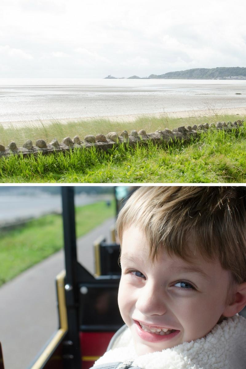 swansea-bay-rider-train-mumbles