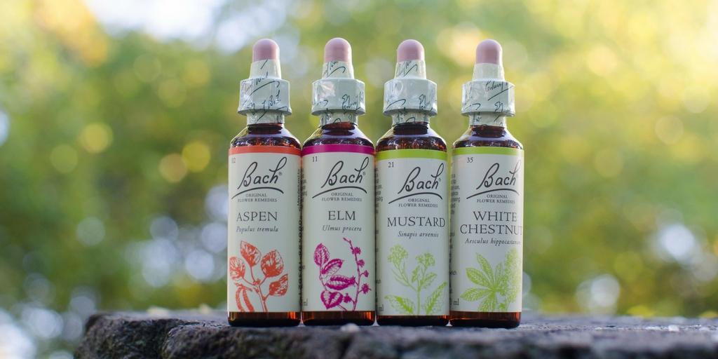 bach-original-flower-remedies-modern-look