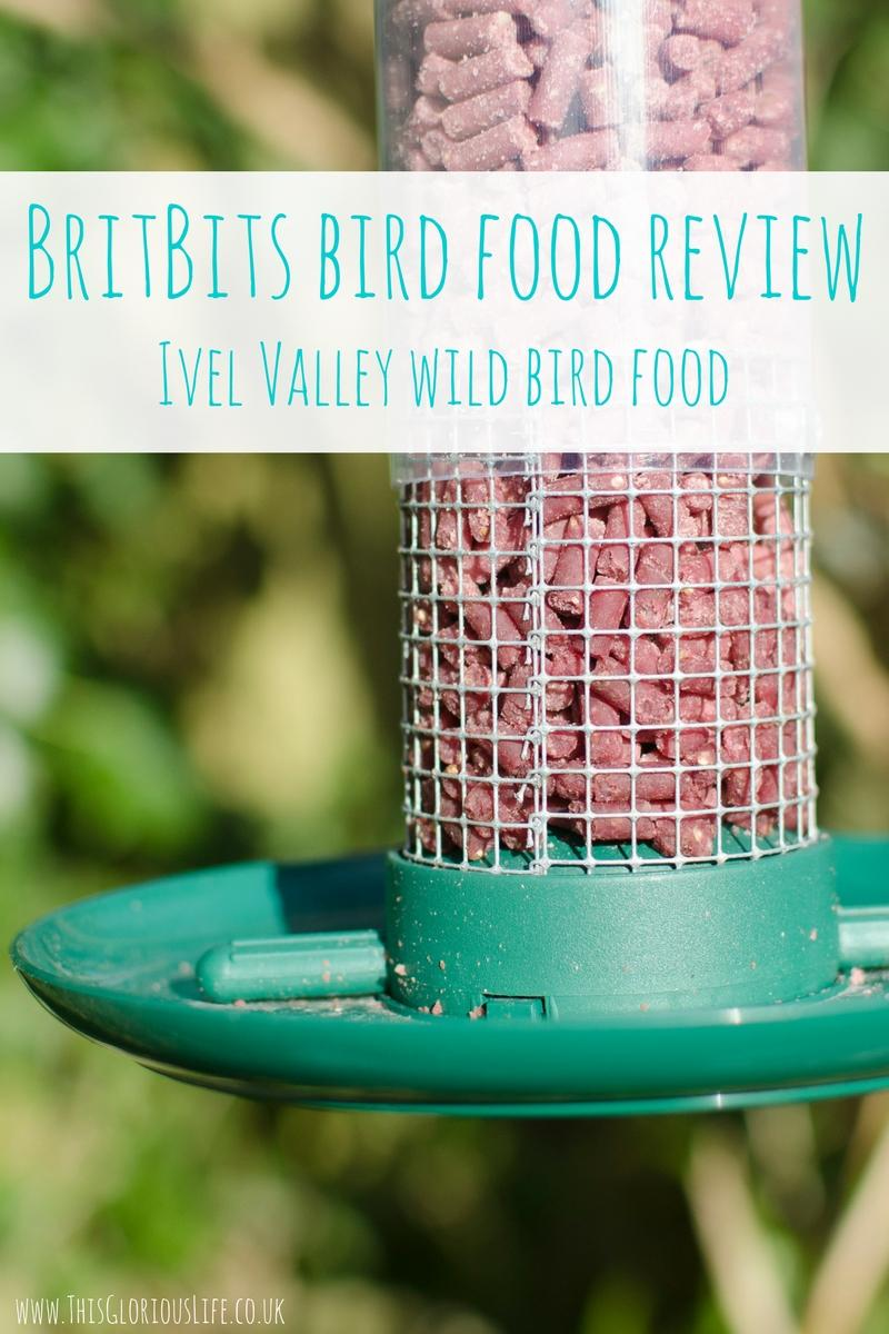 Mesh Food Feeder Review