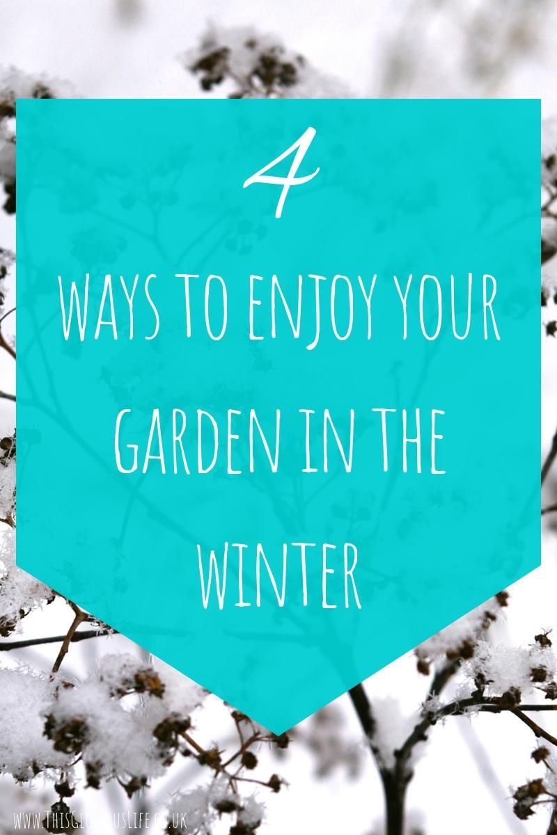 4 ways to enjoy your garden this winter