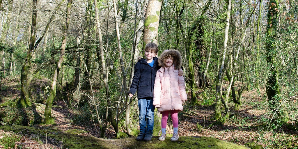 Siblings project – February 2019