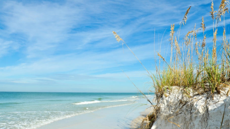 Getting the most out of a family holiday Florida