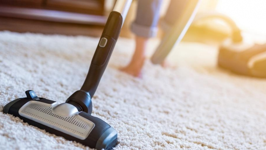 what to do about mould in your carpet