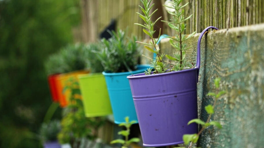 ways to make the most of the garden before autumn arrives